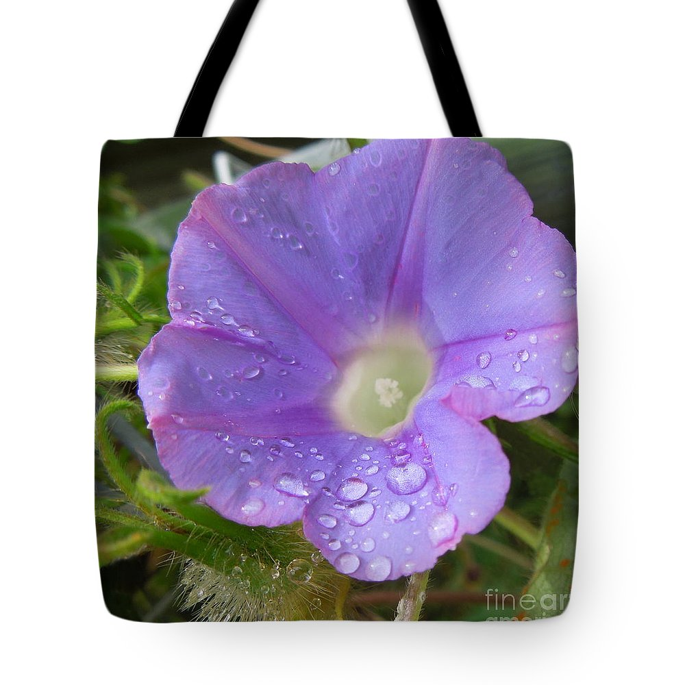 Morning Glory Tote Bag featuring the photograph Morning Rain Drops by Renee Trenholm