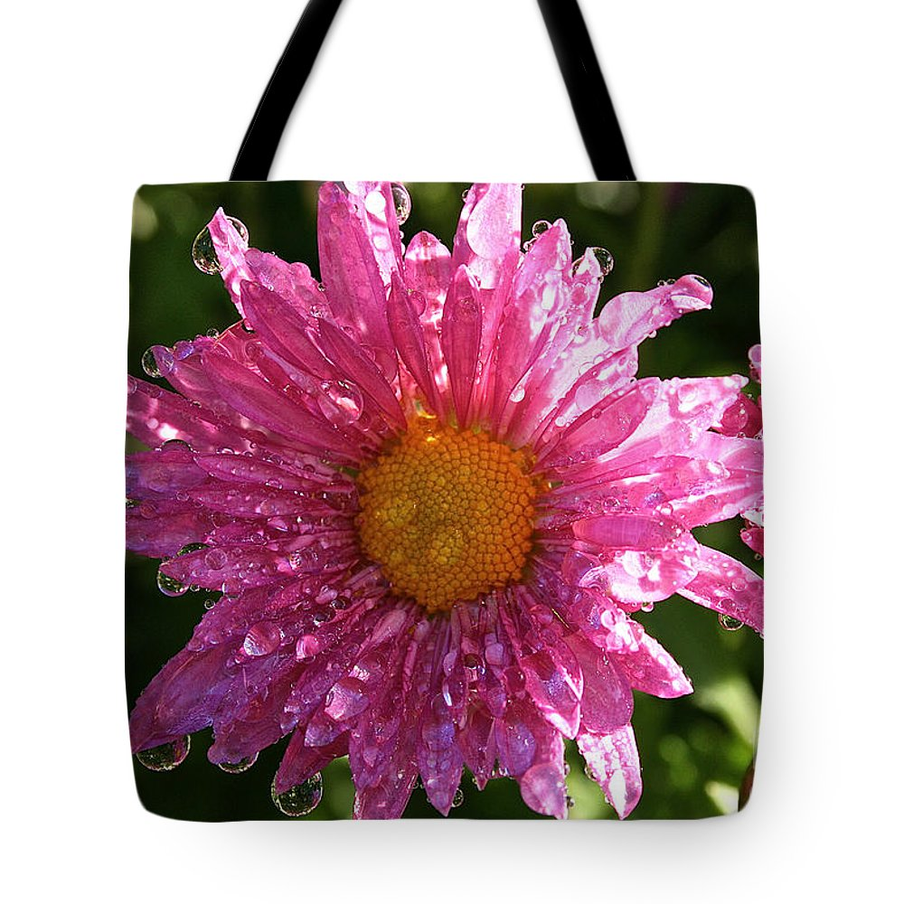 Flower Tote Bag featuring the photograph Morning Sunshine by Susan Herber