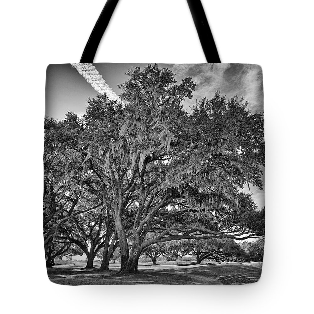 Beaufort County Tote Bag featuring the photograph Moss-draped Live Oaks by Phill Doherty
