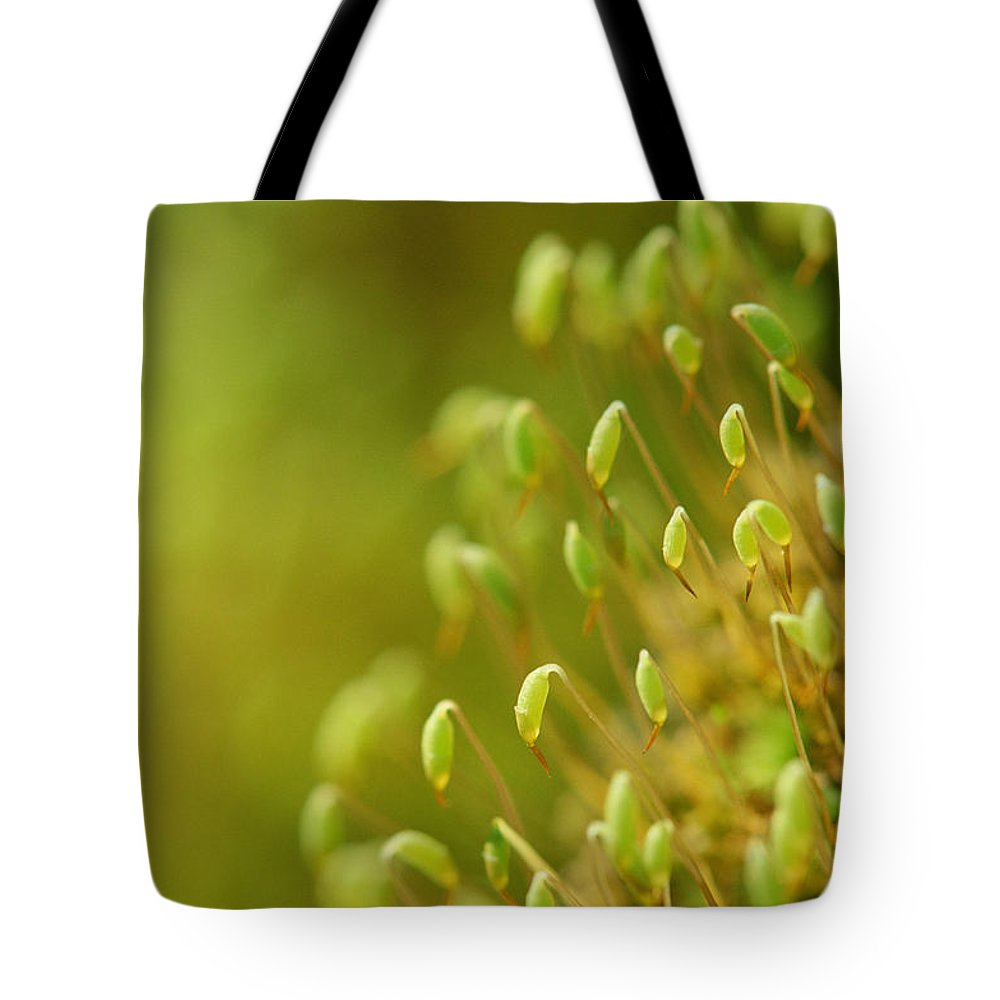 Caplets Tote Bag featuring the photograph Moss With Capsules by Mike Grandmailson