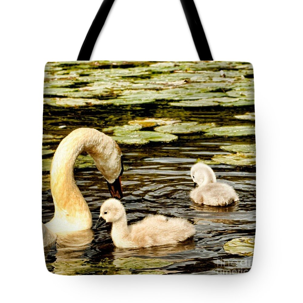 Lily Tote Bag featuring the photograph Mothers Love by Isabella F Abbie Shores