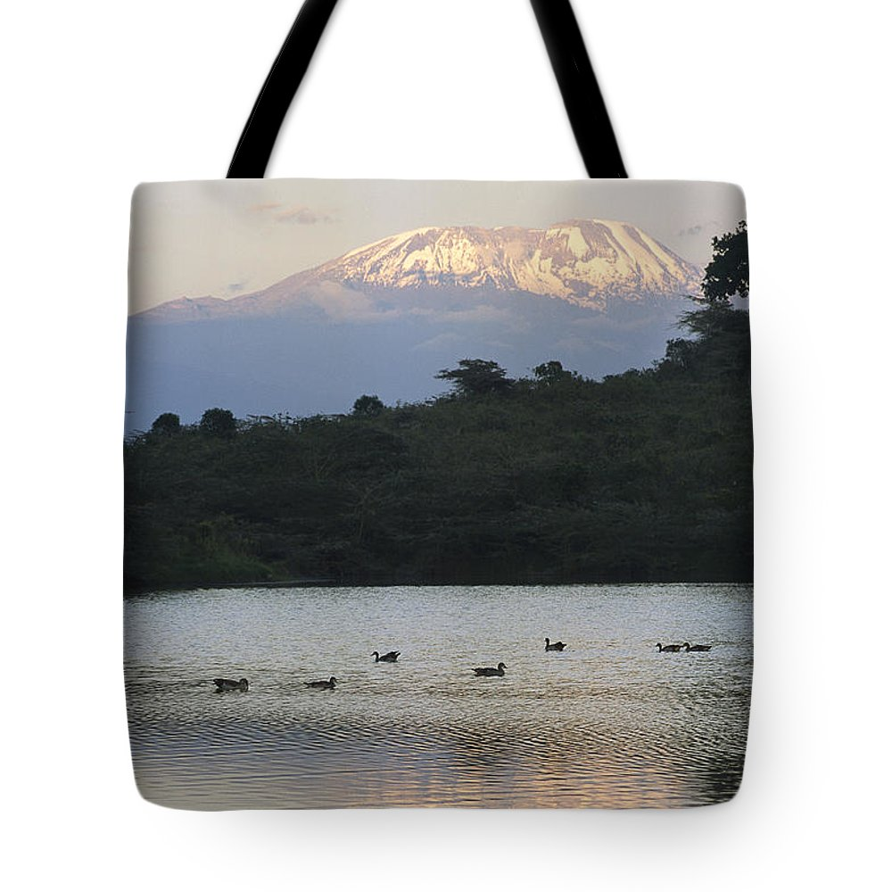 Africa Tote Bag featuring the photograph Mount Kilimanjaro Rises Above One by Richard Nowitz