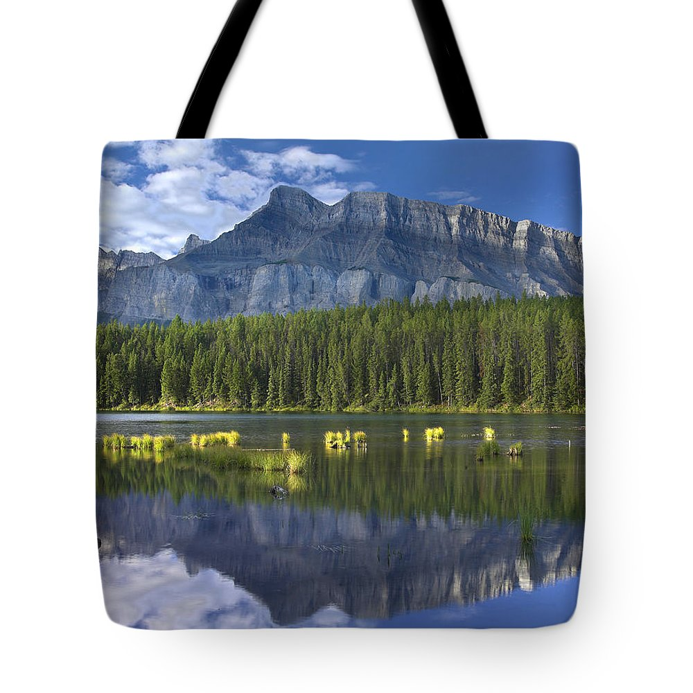 Mp Tote Bag featuring the photograph Mount Rundle And Boreal Forest by Tim Fitzharris