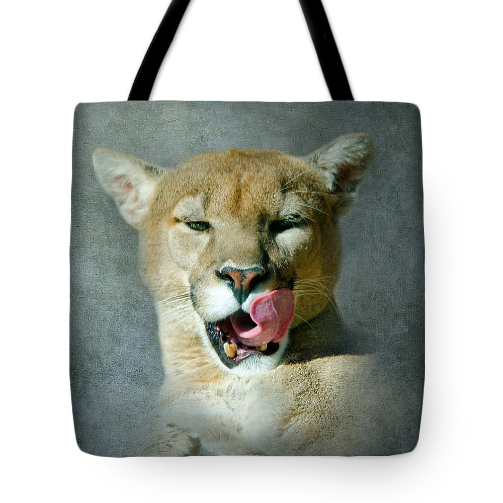 Mountain Lion Tote Bag featuring the photograph Mountain Lion by Betty LaRue