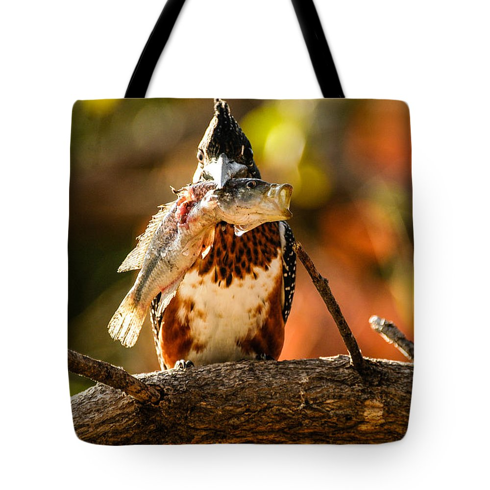 Action Tote Bag featuring the photograph Mouthful by Alistair Lyne