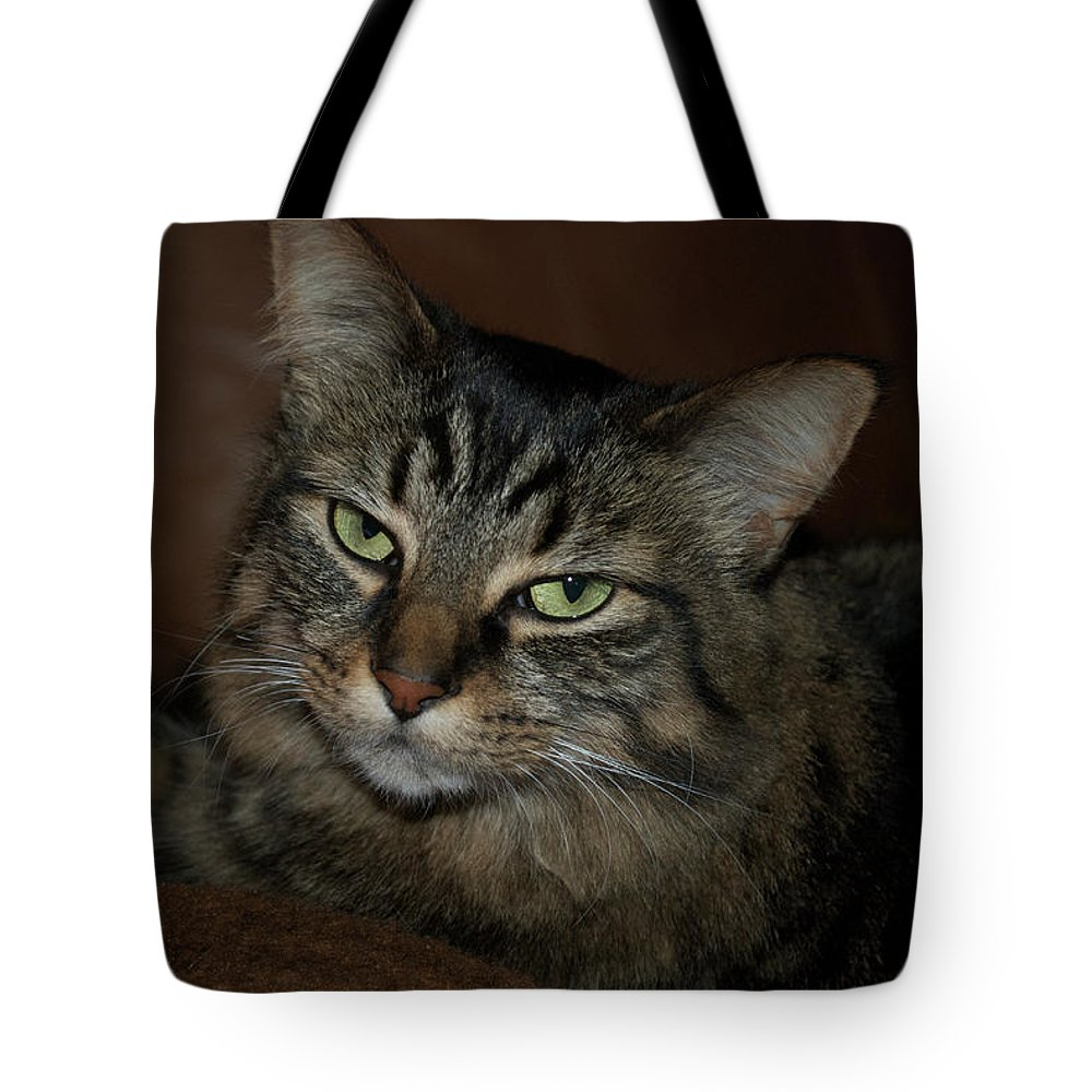 Animals Tote Bag featuring the photograph Ms. Bell by Thomas Woolworth