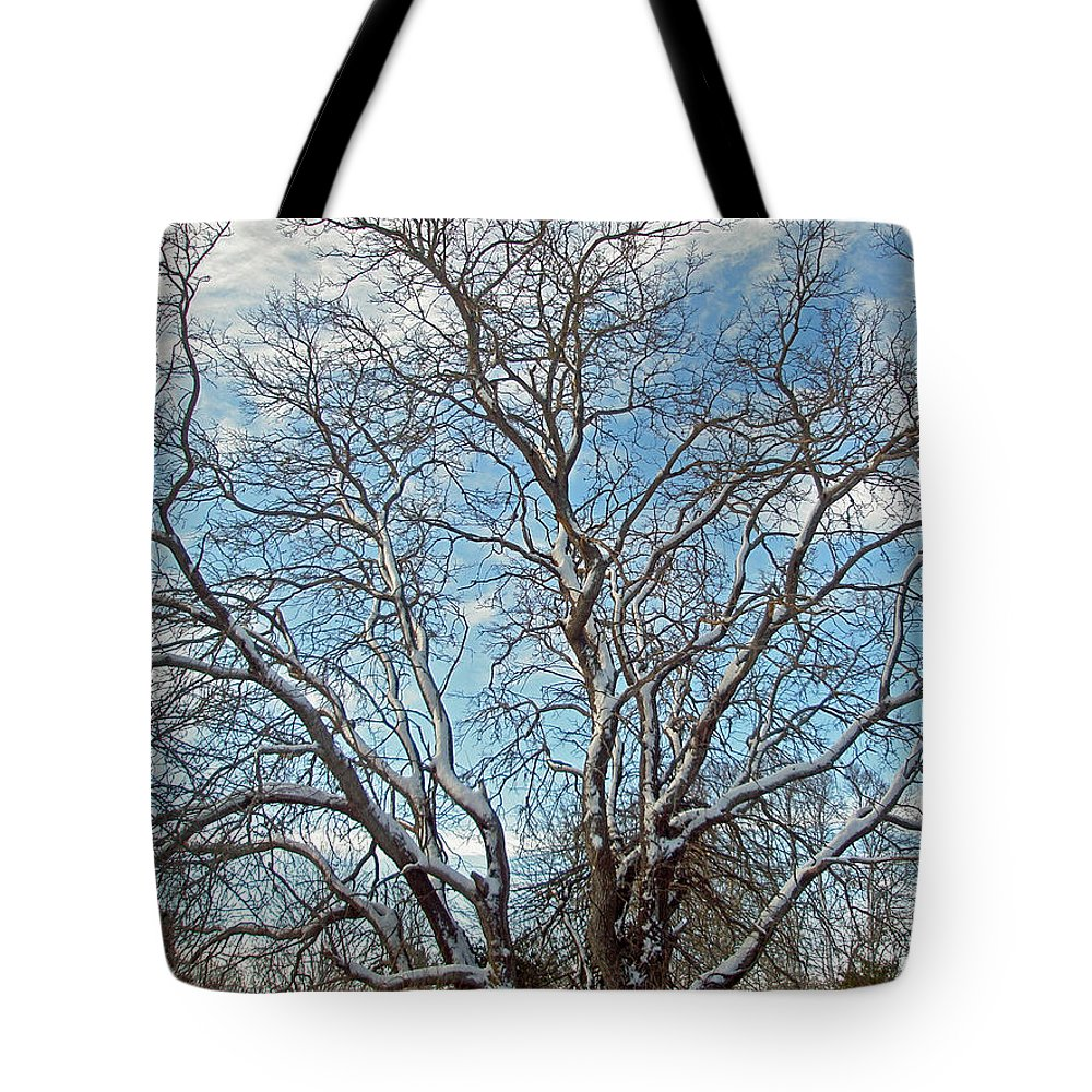 Tree Tote Bag featuring the photograph Mulberry Tree In Snow by Mother Nature