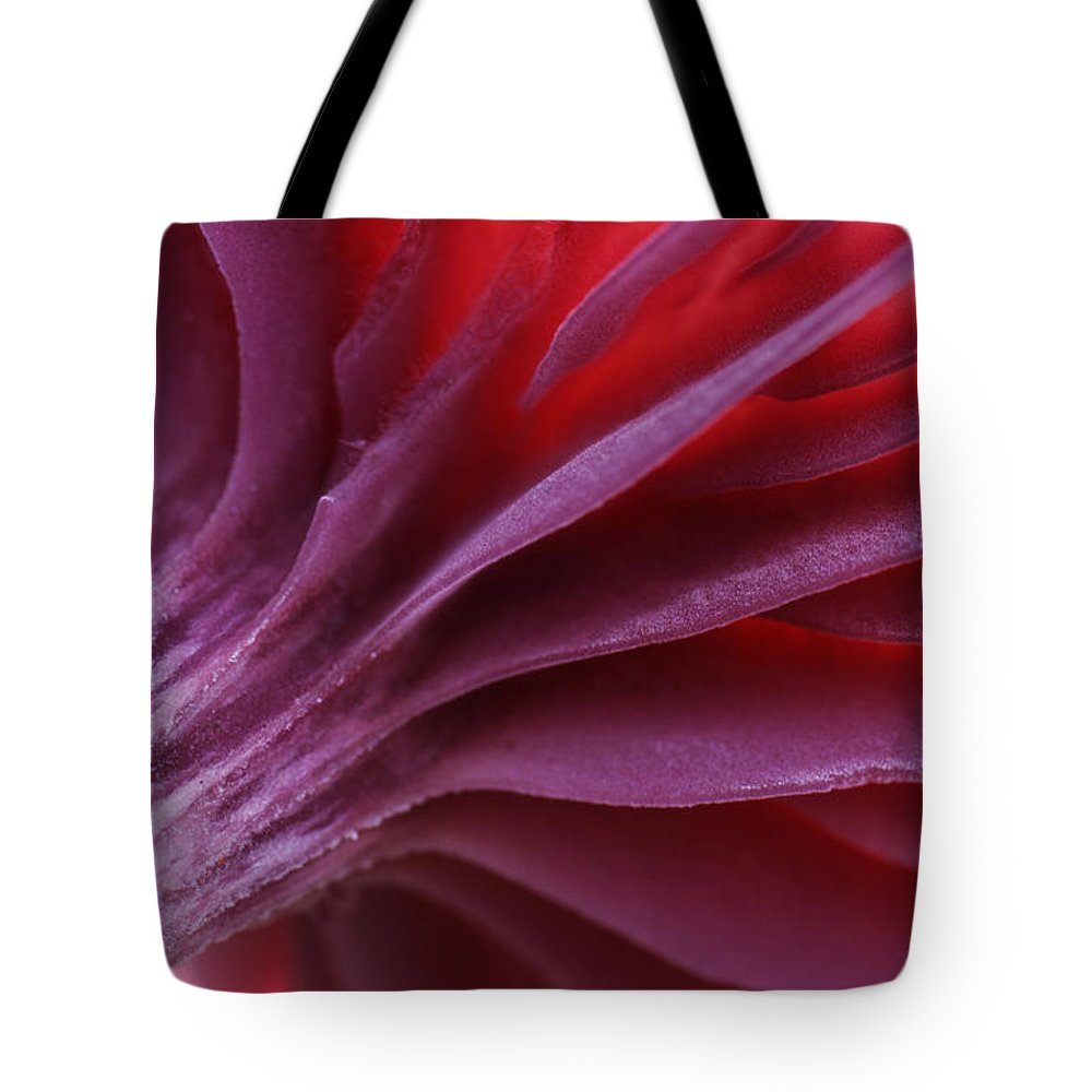 00283576 Tote Bag featuring the photograph Mushroom Marcelleina Sp Detail by Jan Vermeer