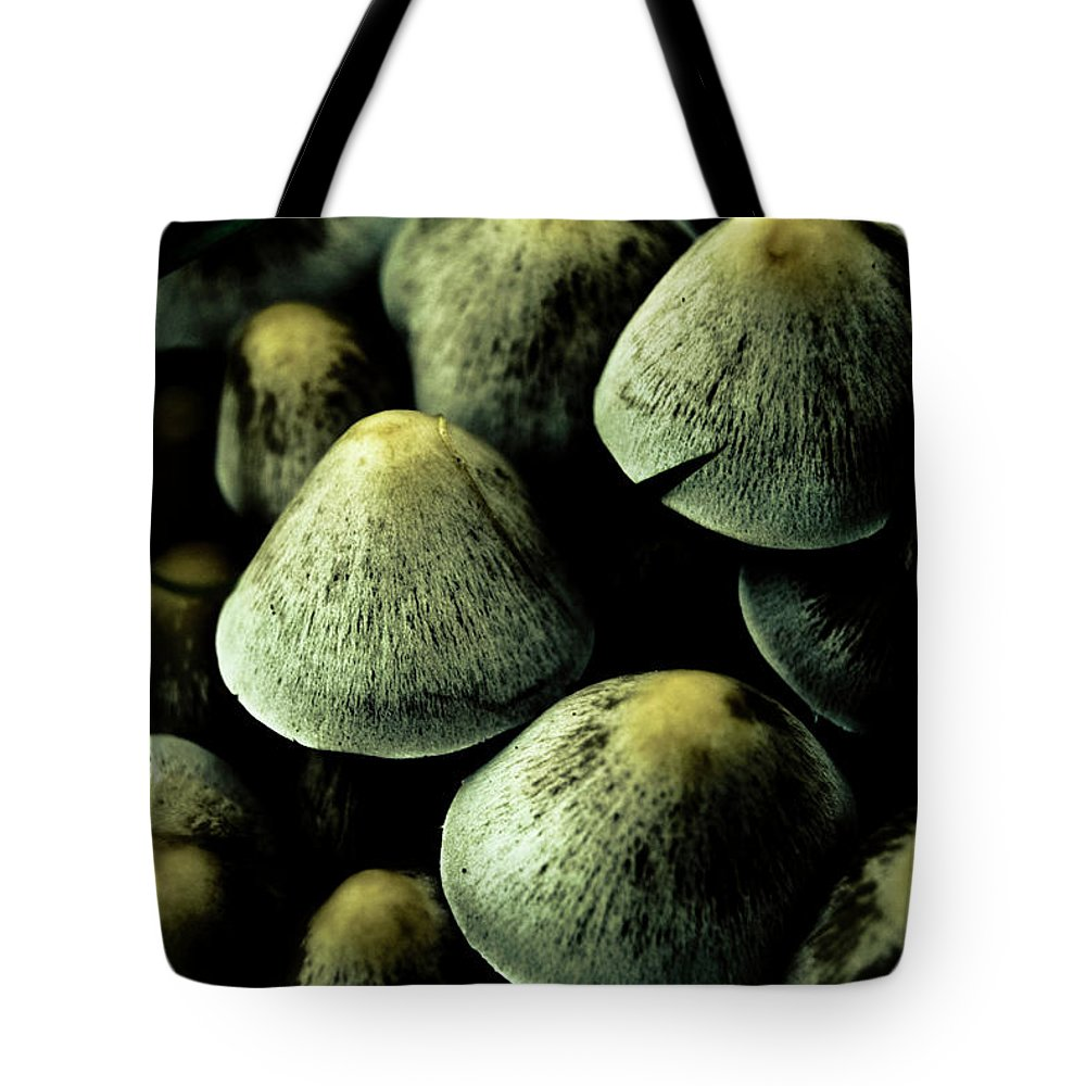 Mushrooms Tote Bag featuring the photograph Mushrooms by Grebo Gray