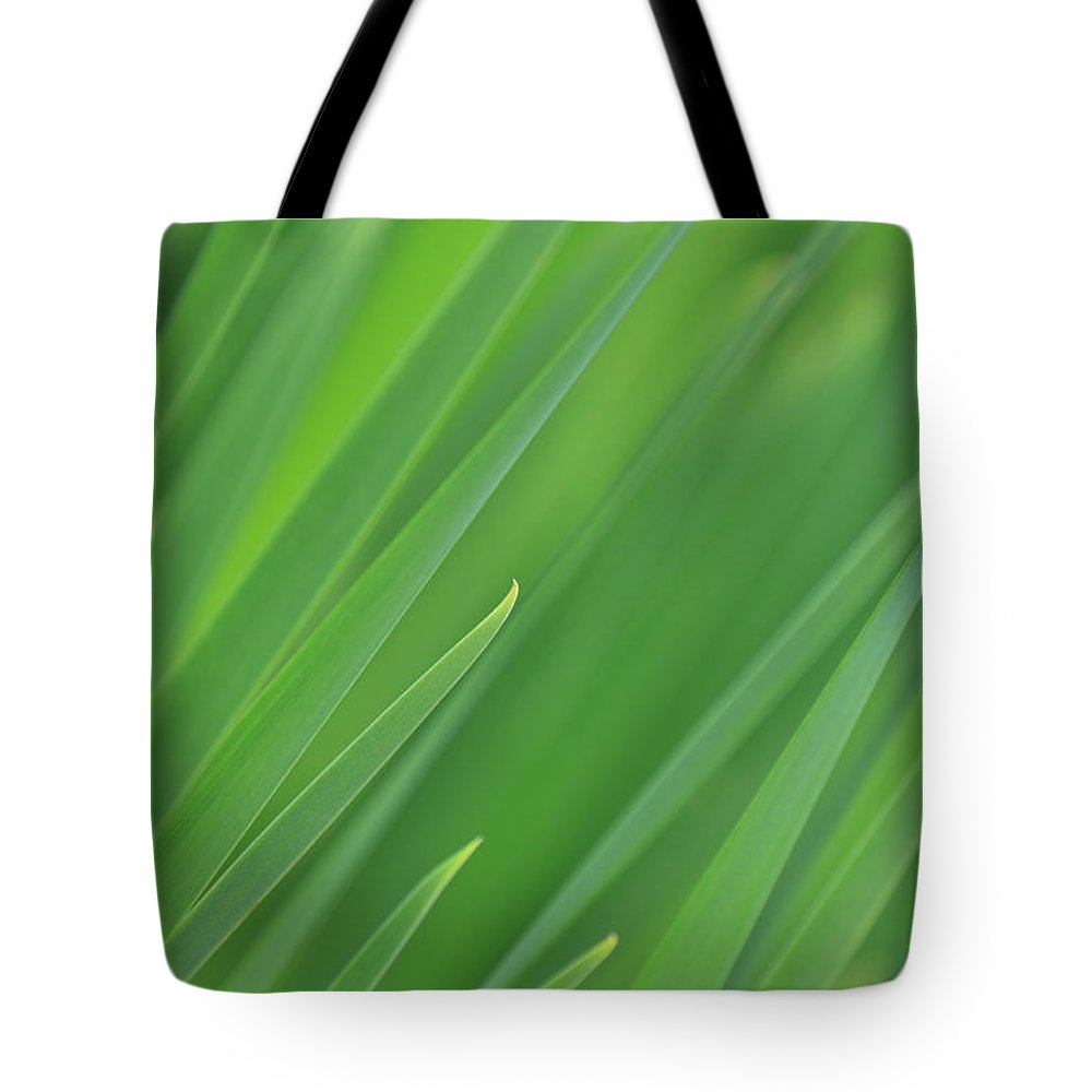 Green Tote Bag featuring the photograph Music by Robin Konarz