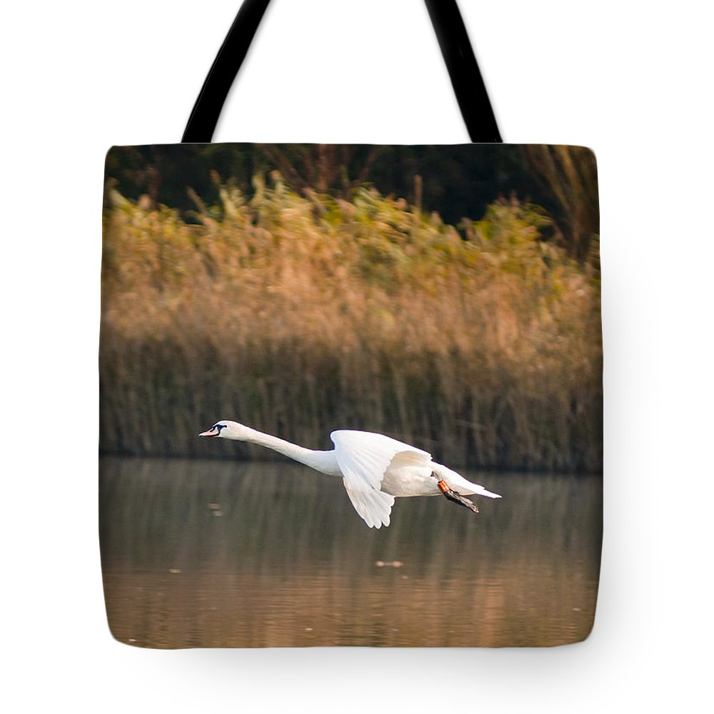 England Tote Bag featuring the photograph Mute Swan by Andrew Michael