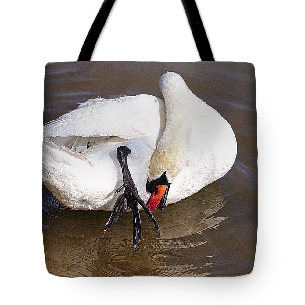 Bird Tote Bag featuring the photograph Mute Swan Grooming In Shallow Water 2 by Roy Williams