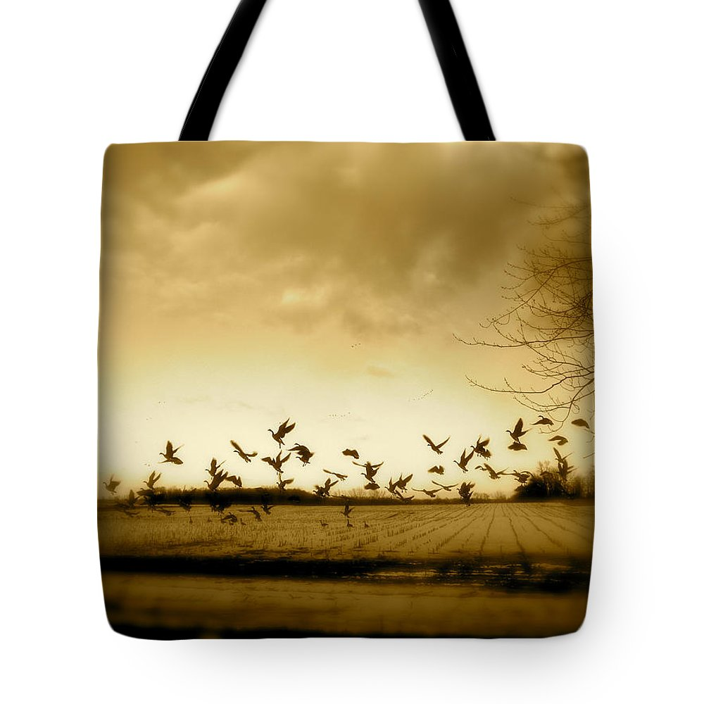 Landscape Tote Bag featuring the photograph My Back Yard by Arthur Barnes