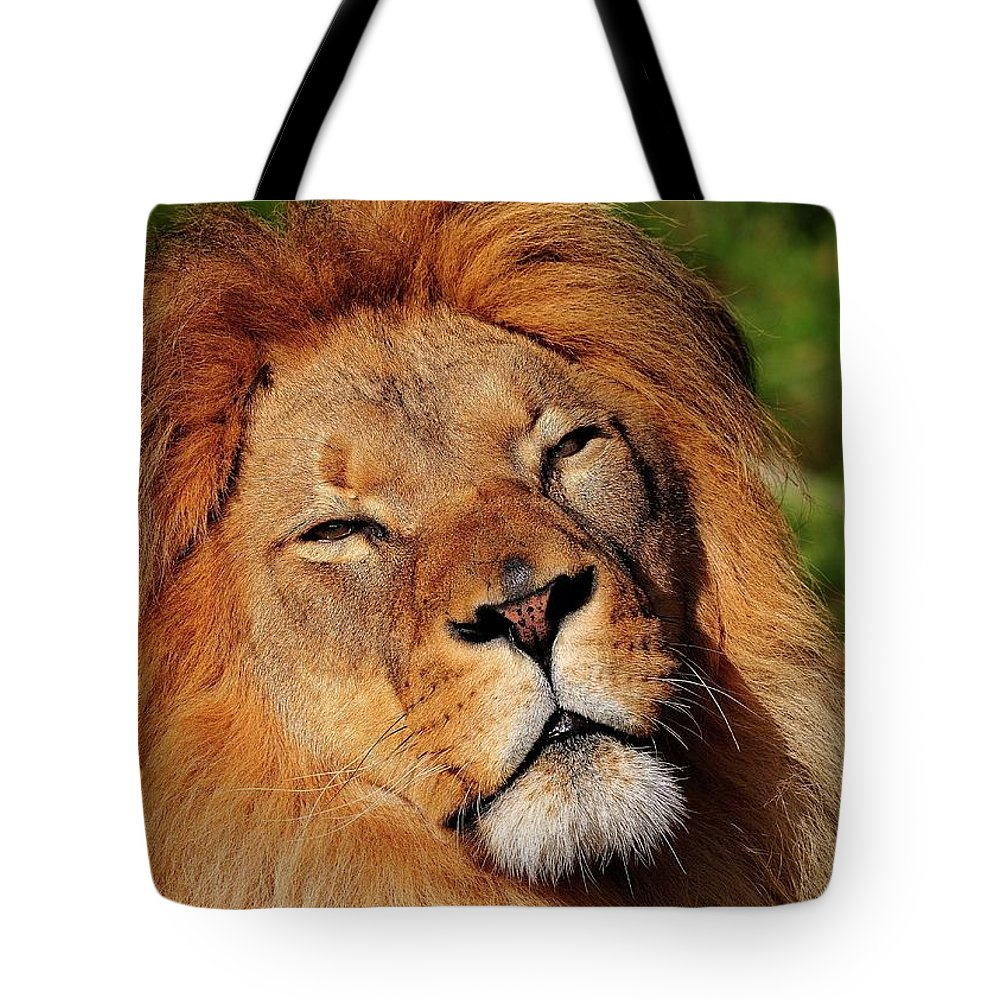African Tote Bag featuring the photograph My Funny Face by Bill Dodsworth