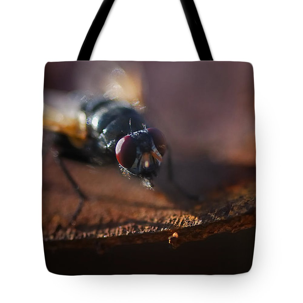 Nature Tote Bag featuring the photograph My My My Little Fly by Susan Capuano