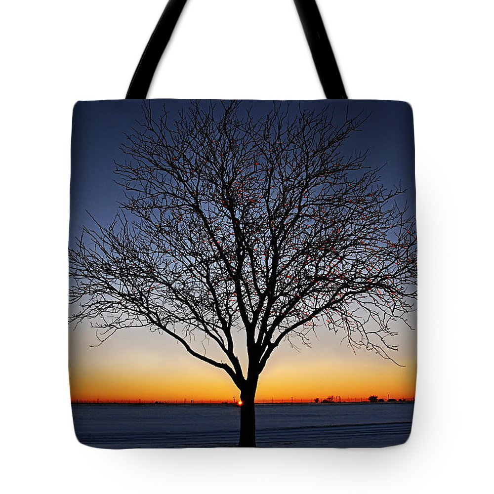 Landscapes Tote Bag featuring the photograph Nature's Light by Melany Sarafis