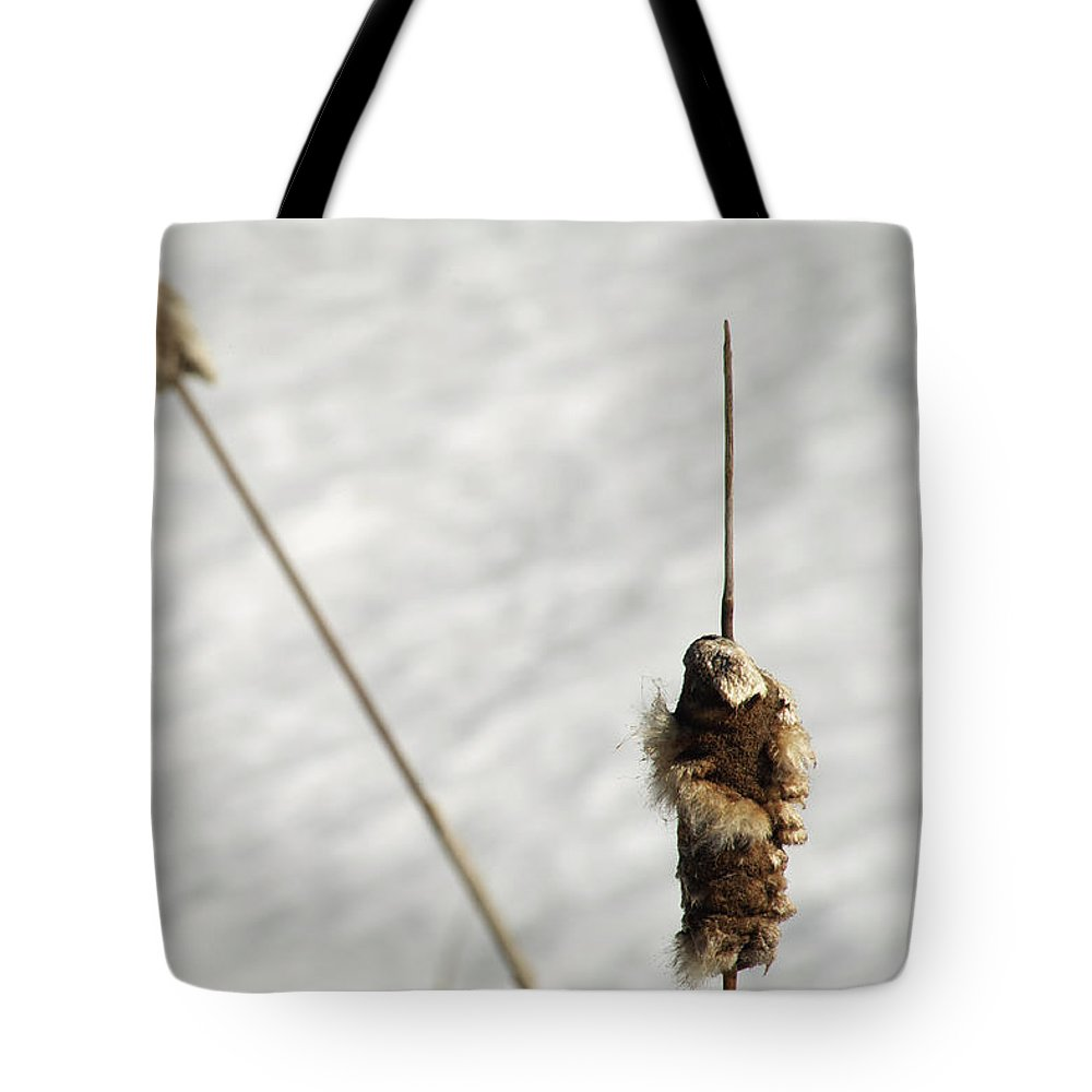Nature Tote Bag featuring the photograph Natures Spear by Elaine Mikkelstrup