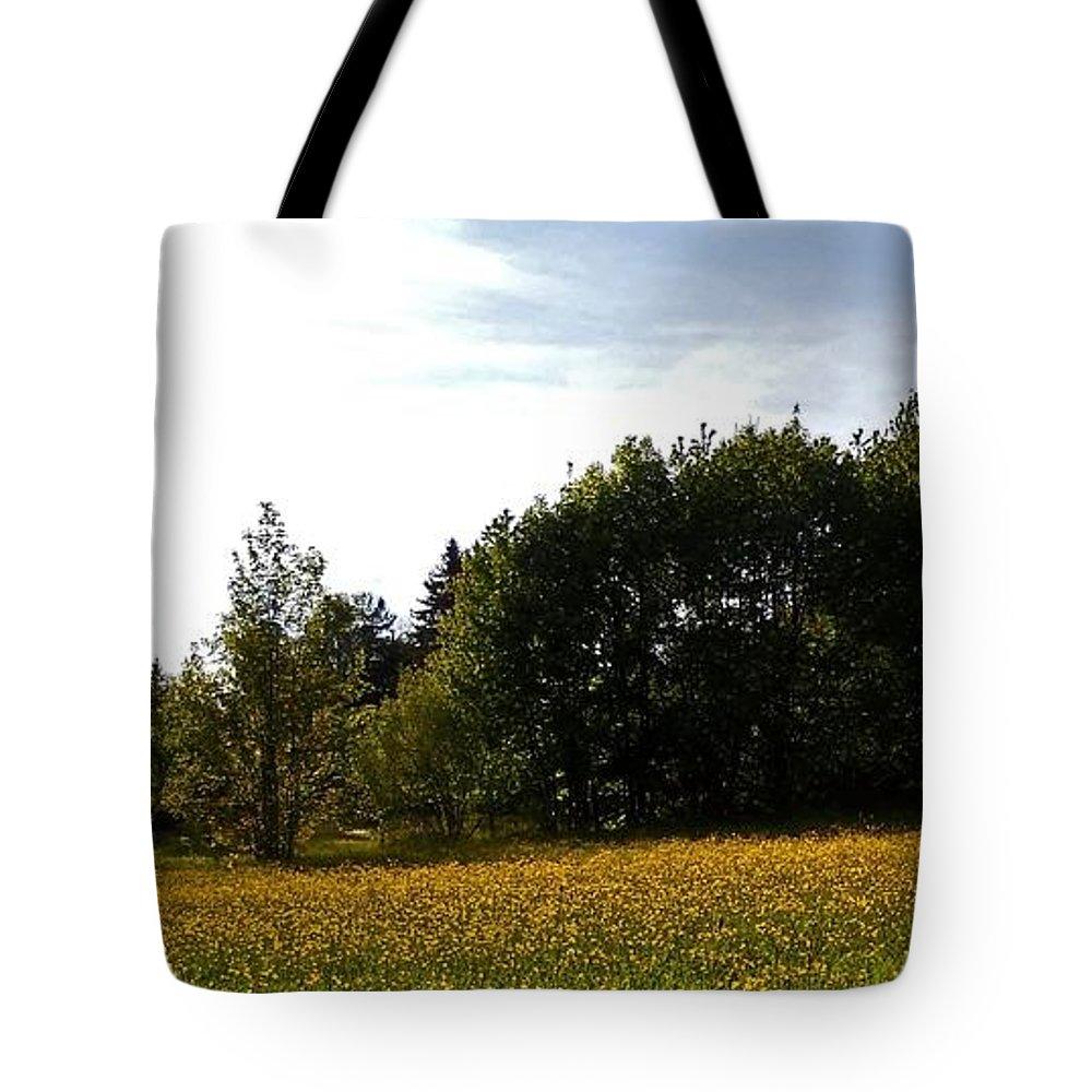 Sonnenschein Tote Bags