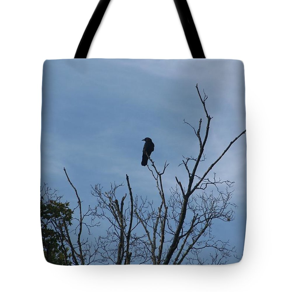 Bird Tote Bag featuring the photograph Nevermore by Barbara S Nickerson