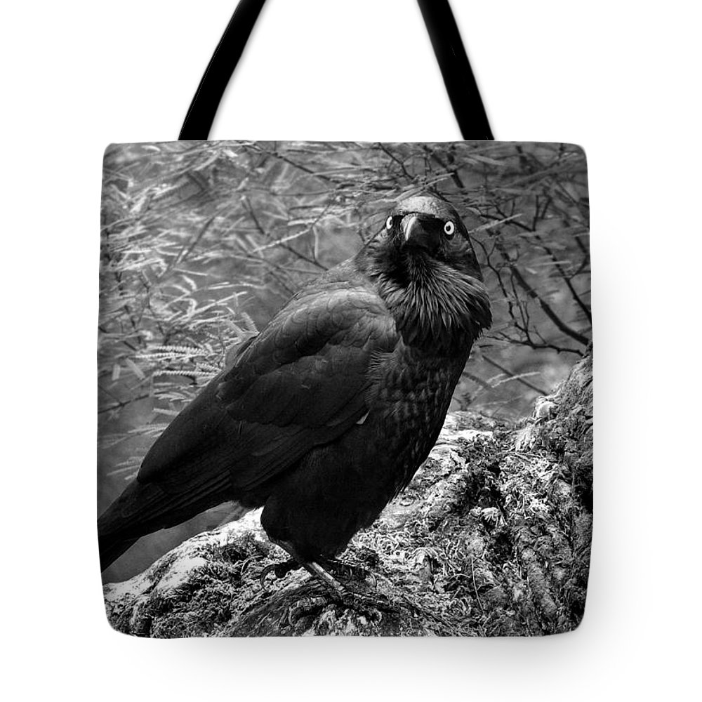 Raven Tote Bag featuring the photograph Nevermore - Black And White by Michelle Wrighton