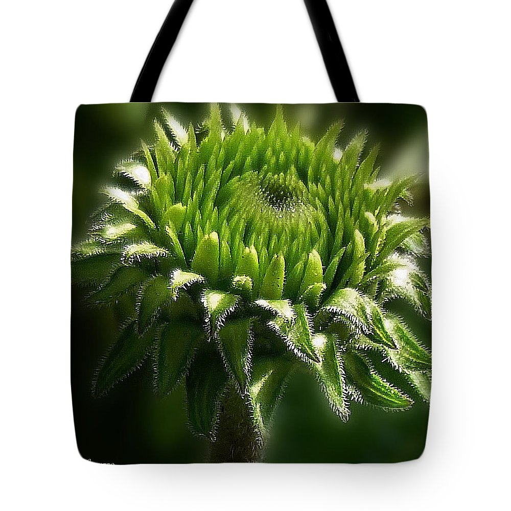 Plant Tote Bag featuring the photograph New Beginnings by Mikki Cucuzzo