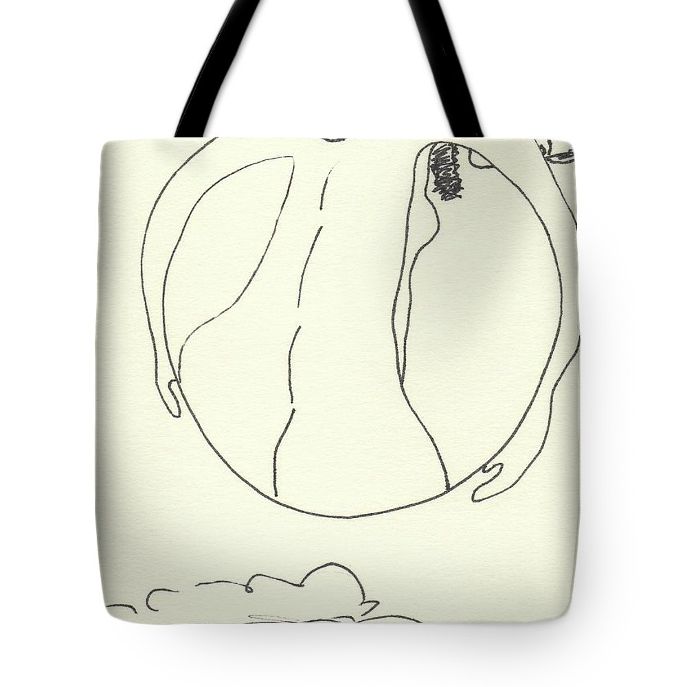 Drawing Tote Bag featuring the drawing New Mexico Moon 3 by Catherine Helmick