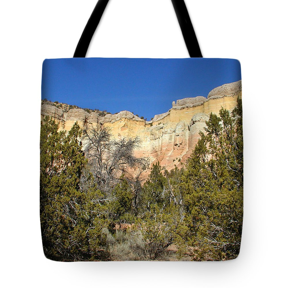 New Mexico Tote Bag featuring the photograph New Mexico Series - Bandelier I by Kathleen Grace
