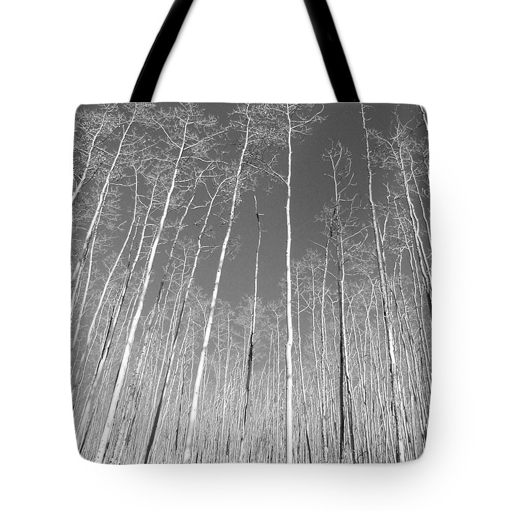 Landscape Tote Bag featuring the photograph New Mexico Series - Leaf Free Black And White by Kathleen Grace