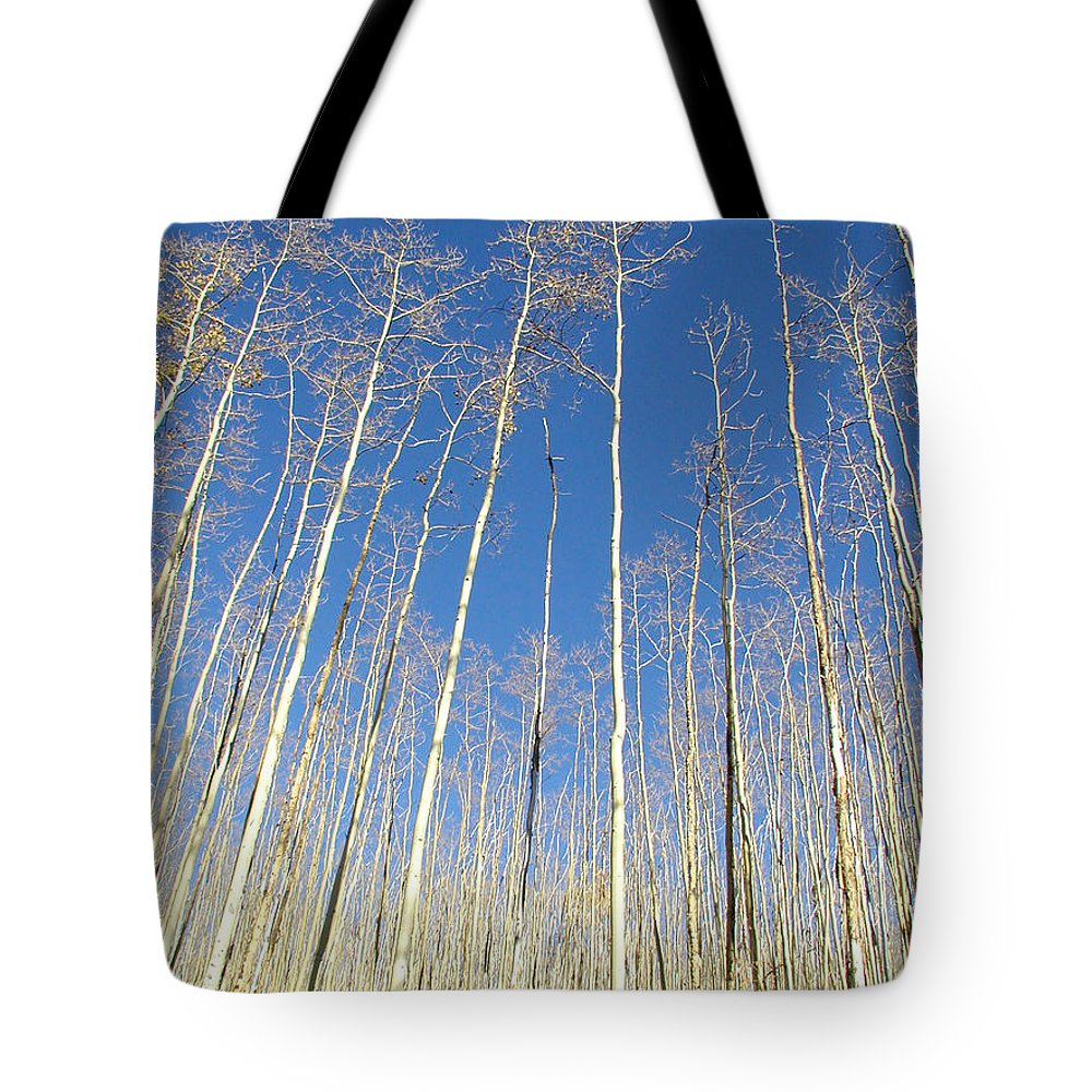 Landscape Tote Bag featuring the photograph New Mexico Series - Leaf Free On The Mountain by Kathleen Grace