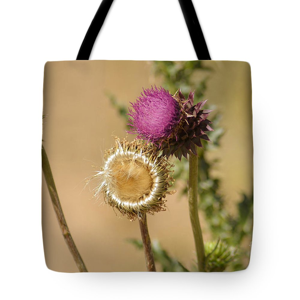 Fine Art Tote Bag featuring the photograph New Mexico Thistle II by Donna Greene