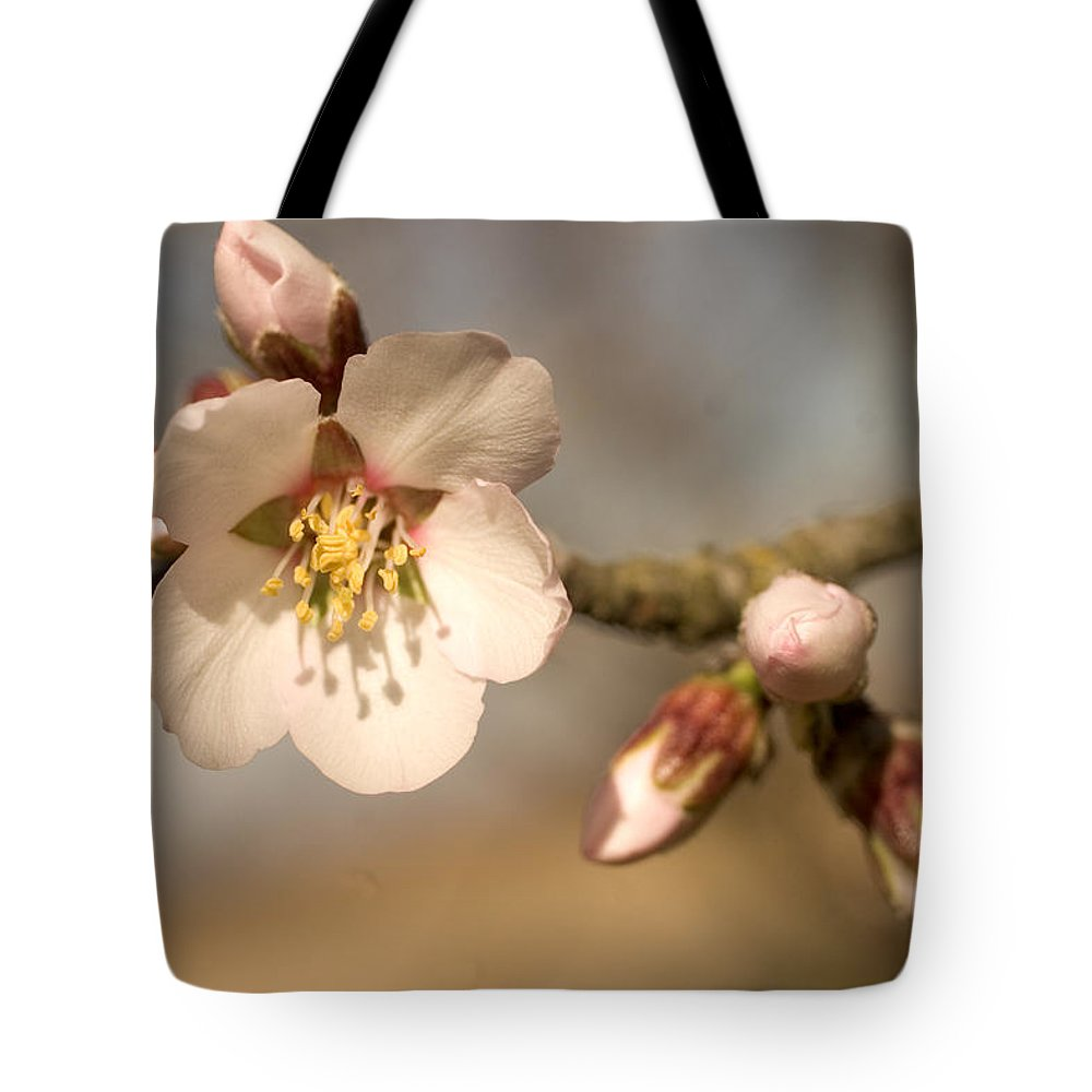 Nobody Tote Bag featuring the photograph Newly Formed Buds And Flowers Bloom by Phil Schermeister