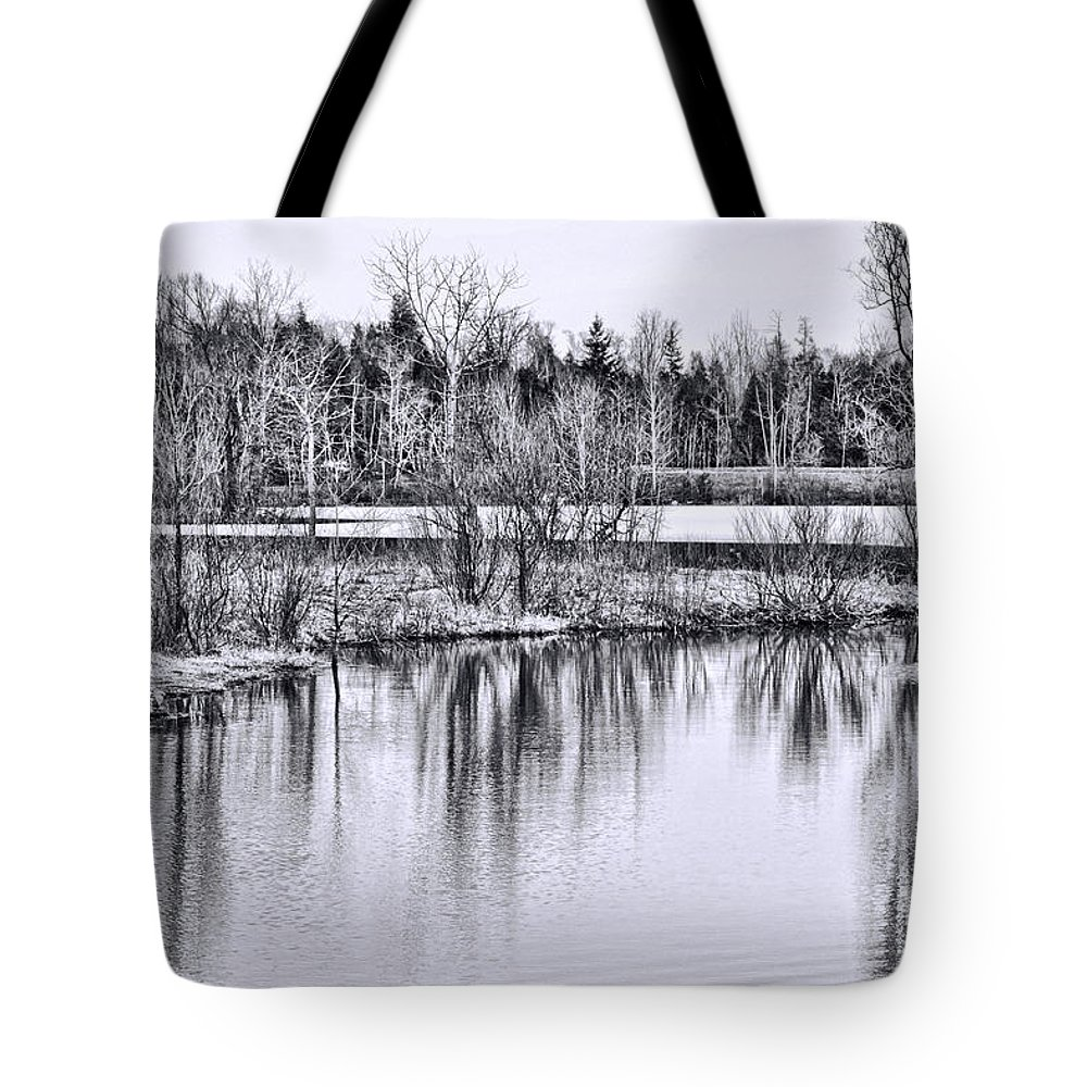 Icy Tote Bag featuring the photograph Nice Day For A Hike by Traci Cottingham