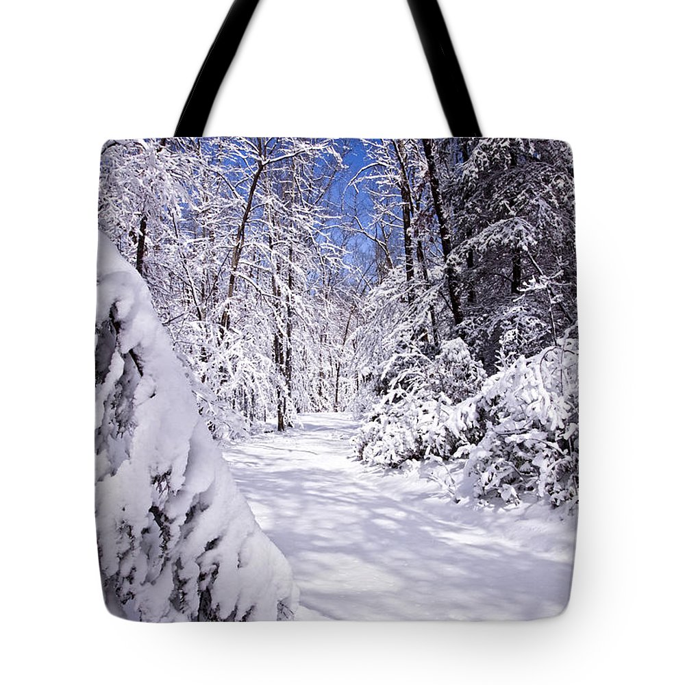 Forest Paths Tote Bag featuring the photograph No Footprints by Rob Travis