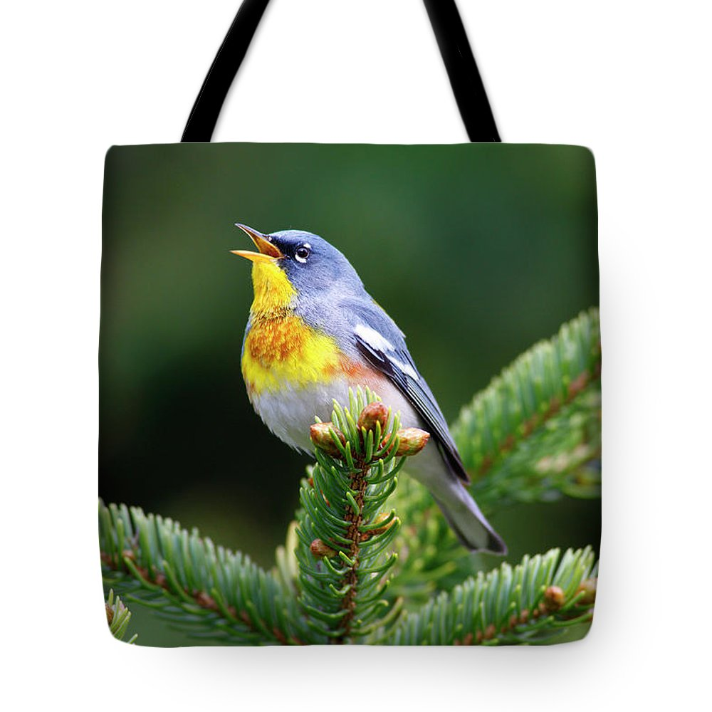 Mp Tote Bag featuring the photograph Northern Parula Parula Americana Male by Scott Leslie
