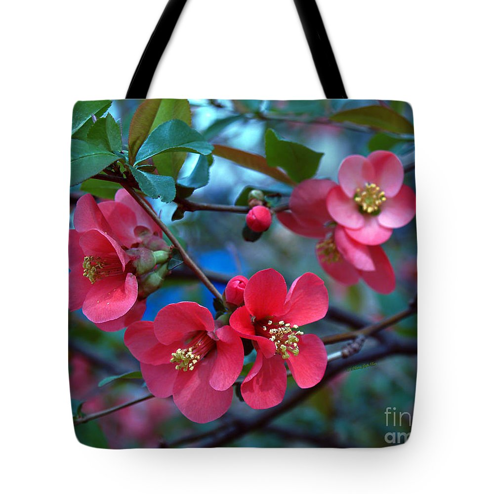 Fine Art Photography Tote Bag featuring the photograph Not So Crabby by Patricia Griffin Brett