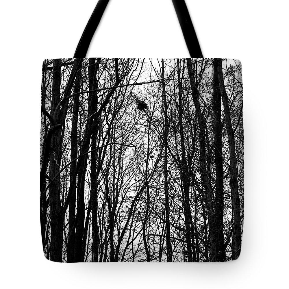 November Tote Bag featuring the photograph November Wood by Valentino Visentini