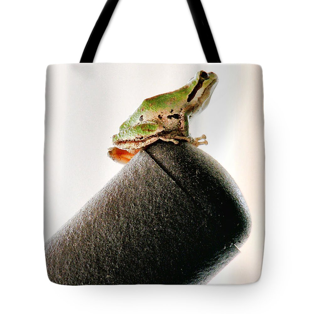 Frog Tote Bag featuring the photograph Now What? by Rory Sagner