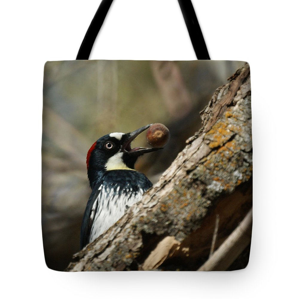 Now Where Do I Put This One Tote Bag featuring the photograph Now Where Do I Put This One by Ernie Echols