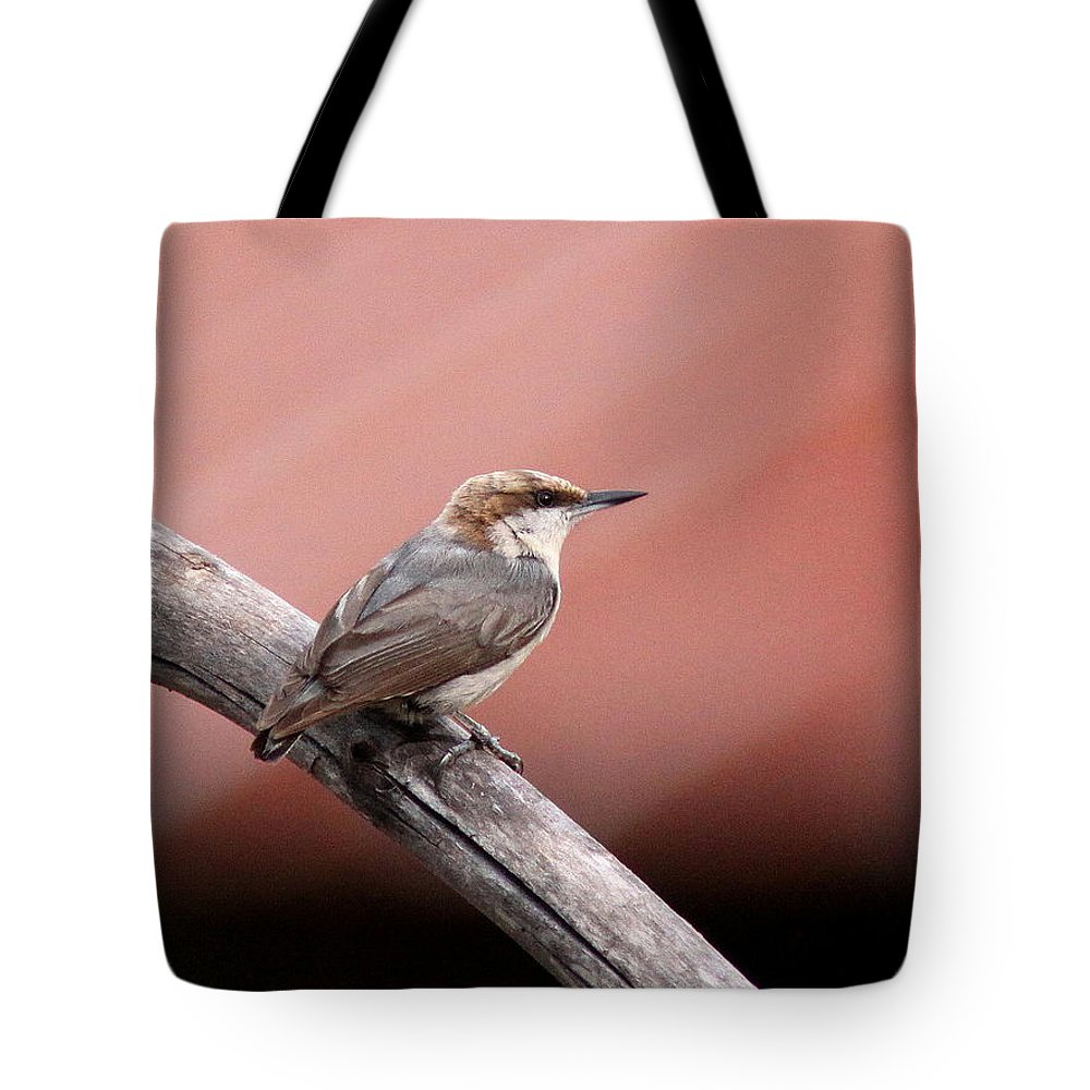 Brown-headed Nuthatch Tote Bag featuring the photograph Nuthatch - Bird - Barn Roof by Travis Truelove
