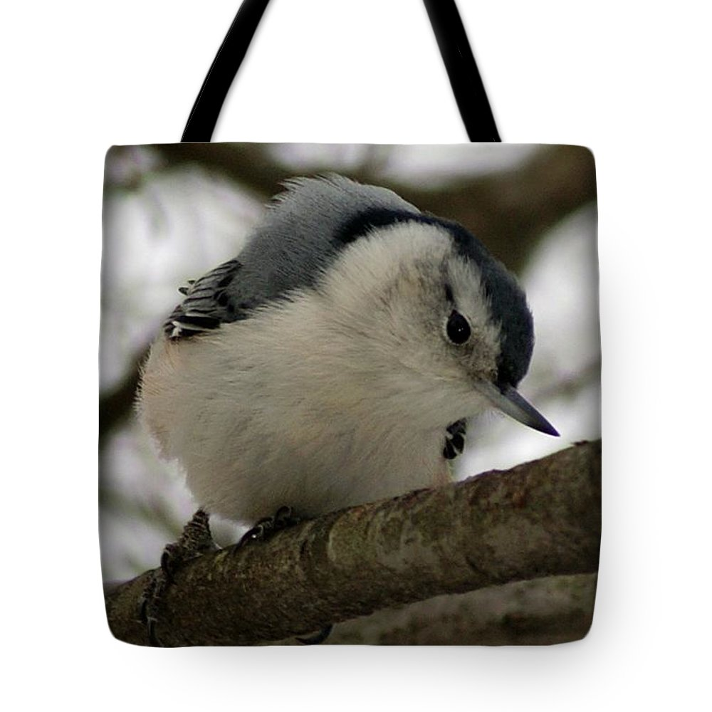 Nuthatch Tote Bag featuring the photograph Nuthatch I by Joe Faherty