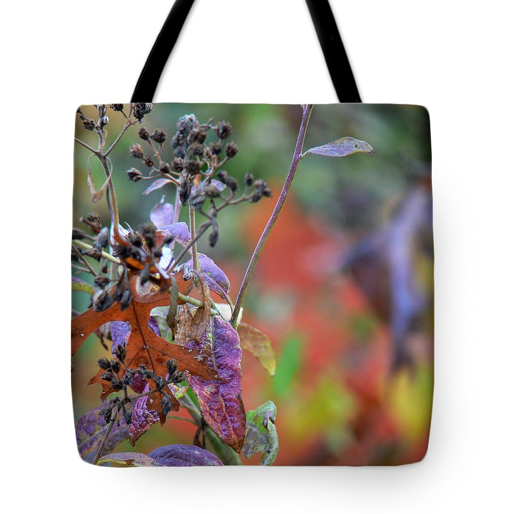 Ny Tote Bag featuring the digital art Ny Fall 2 by Ericamaxine Price