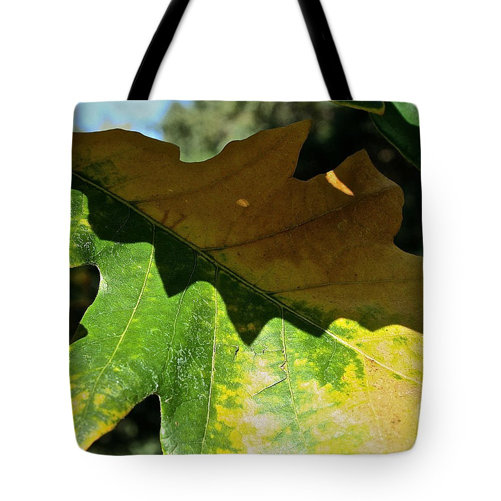 Outdoors Tote Bag featuring the photograph Oak Leaf Autumn by Susan Herber