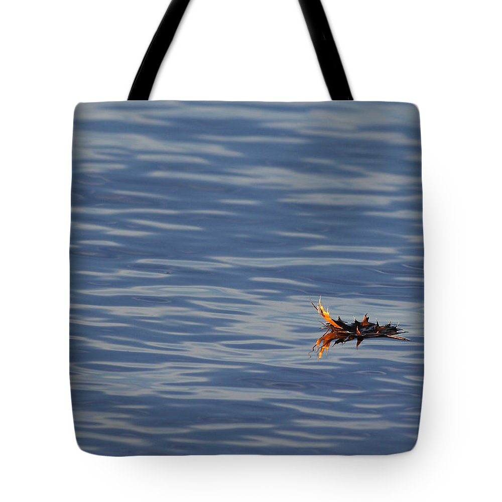 Water Tote Bag featuring the photograph Oak Leaf Floating by Daniel Reed