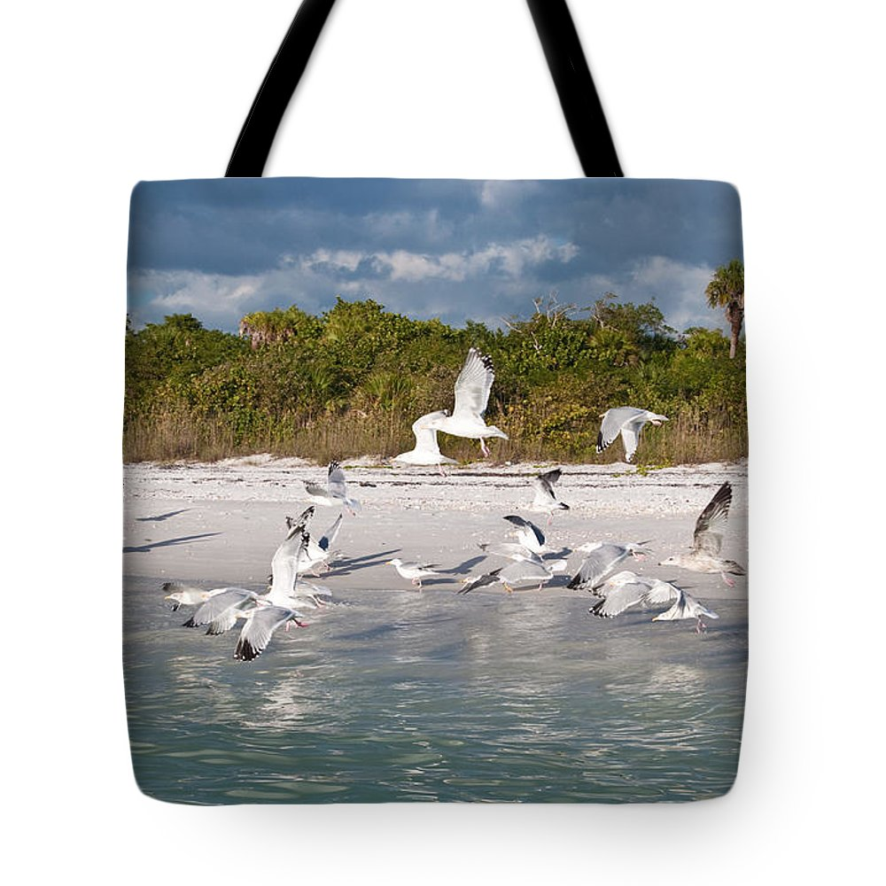 Seagulls Tote Bag featuring the photograph Off The Bow by Christine Stonebridge