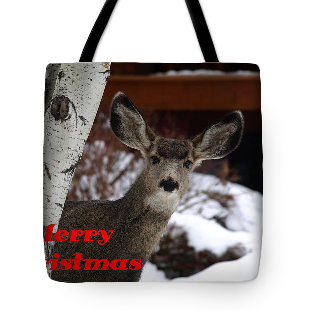 Christmas Tote Bag featuring the photograph Oh Deer Merry Christmas by DeeLon Merritt