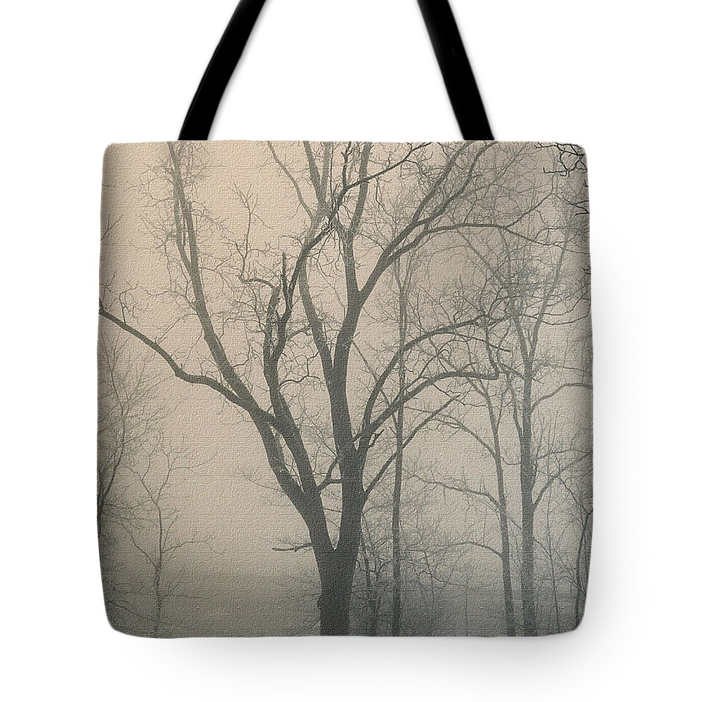 Winter Tote Bag featuring the photograph Ohio Winter Solitude by Pamela Baker