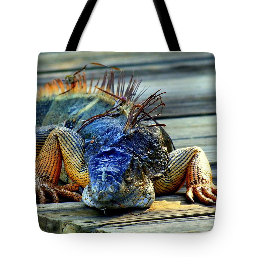 Reptiles Tote Bag featuring the photograph Old And Weary by Karen Wiles