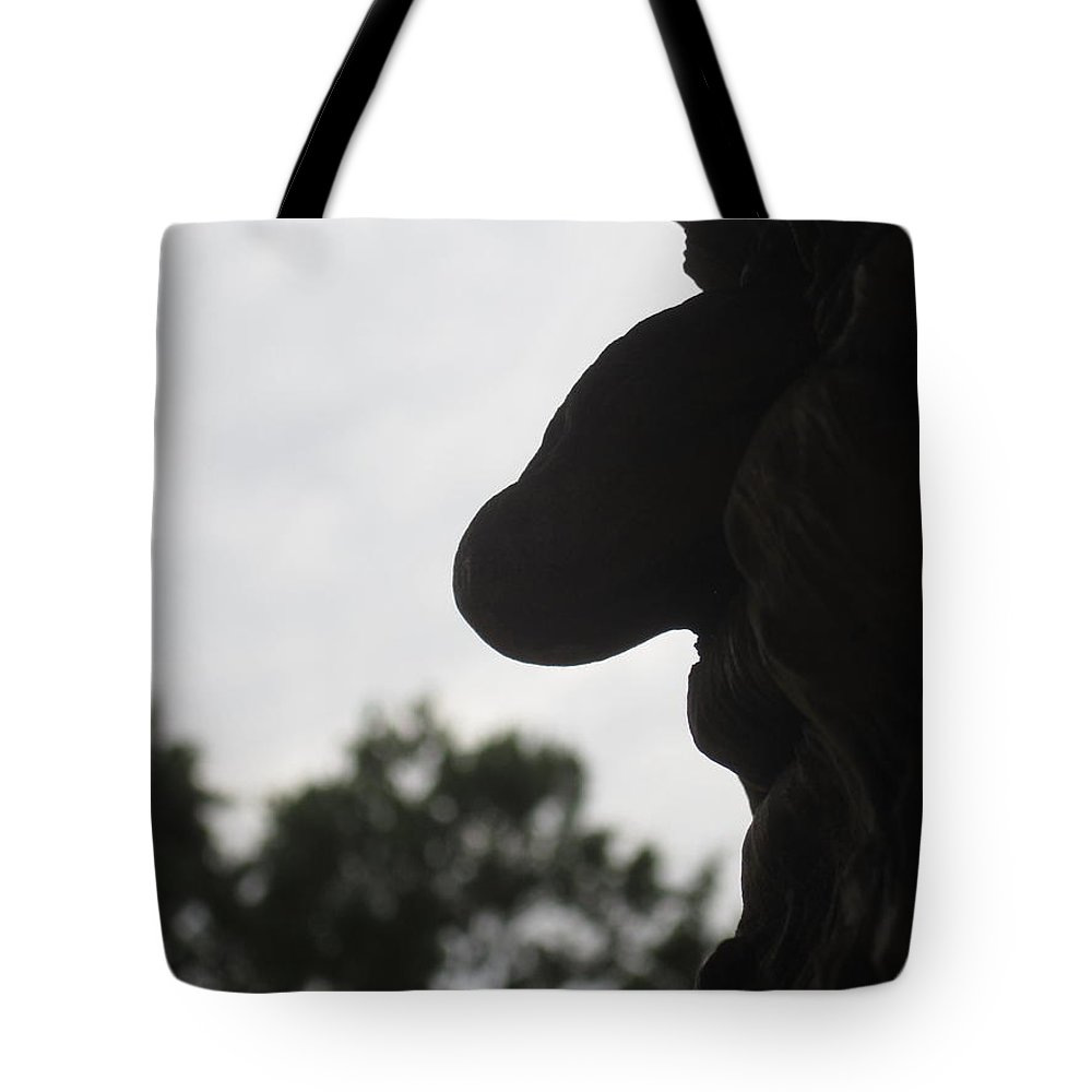 Old Tote Bag featuring the photograph Old Profile by Jan Prewett