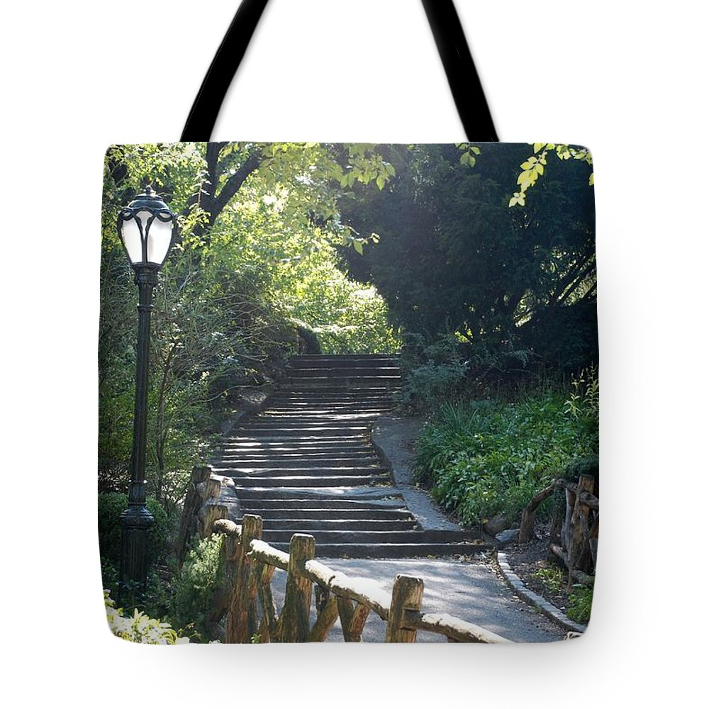 Central Park Tote Bag featuring the photograph Oldbridge Steps by Rob Hans