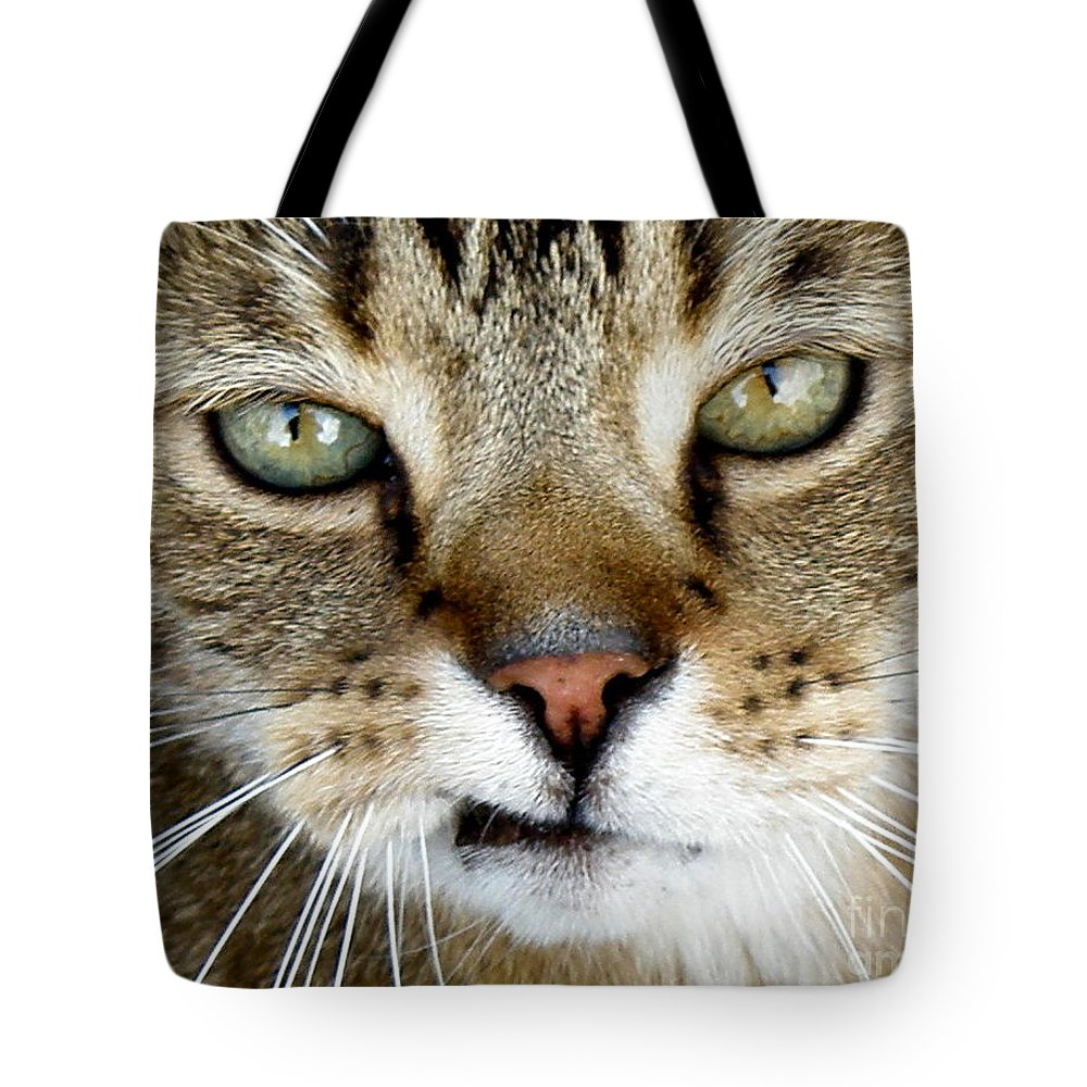 Cat Tote Bag featuring the photograph Oliver The Cat by Lainie Wrightson